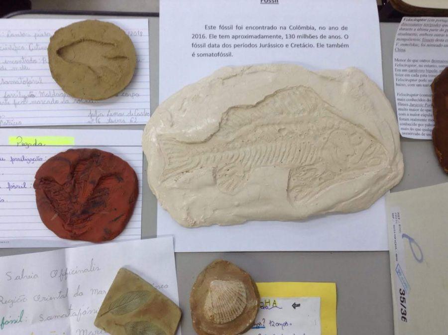 Trabalho do 6°ano sobre réplicas de fósseis